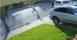 Armed Robbery Goes Bad Real Quick:  Robber Runs Off Squealing Like A Pig [VIDEO]