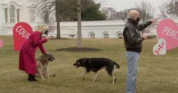 Cesar Millan, 'Dog Whisperer,' Addresses Major Biden's White House Incidents