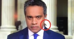 'F*cking Cicada': CNN Reporter Absolutely Loses It As Huge Bug Crawls Up His Neck On Camera