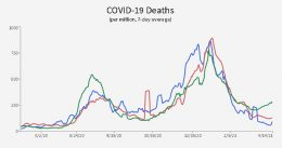 See How Much You Know About Covid-19 Based On The Information You've Been Fed. Take The Covid Quiz Here