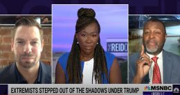 Joy Reid and guests paint Republicans as terrorists who are 'starting to kill our kids' [VIDEO]